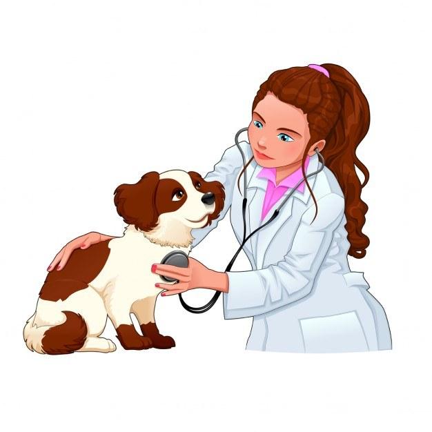 veterinaire avec un chien de bande dessinee et illustration vectorielle drole personnages isoles 1196 293