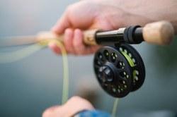 Rendeux - Grand concours de pêche à la truite de l'été
